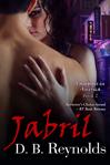 Jabril mini blog size
