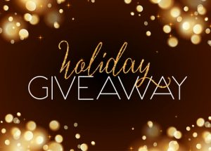 HOLIDAY GIVEAWAY and WRITE, WRITE, WRITE :: D B  Reynolds com